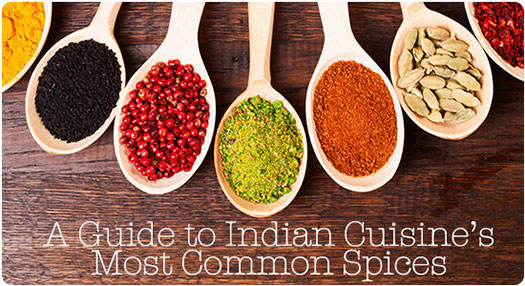 A Guide to Indian Cuisines Most Common Spices